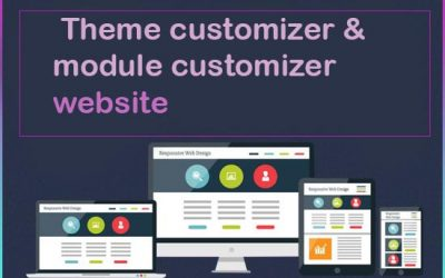 Using The Divi Theme & Module Customizer